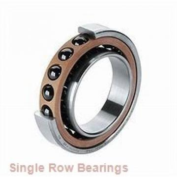 EBC 6219 ZZ  Single Row Ball Bearings