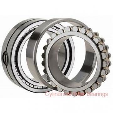 1.181 Inch | 30 Millimeter x 2.378 Inch | 60.409 Millimeter x 1.188 Inch | 30.175 Millimeter  LINK BELT MU5306M  Cylindrical Roller Bearings