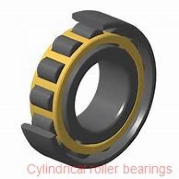 25 mm x 62 mm x 17 mm  SKF NJ 305 ECP  Cylindrical Roller Bearings