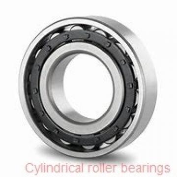 1.969 Inch | 50 Millimeter x 3.543 Inch | 90 Millimeter x 0.787 Inch | 20 Millimeter  SKF NJ 210 ECP/C3  Cylindrical Roller Bearings