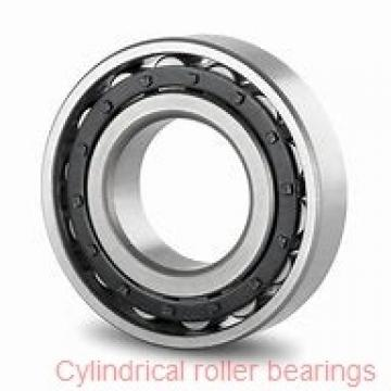 2.165 Inch | 55 Millimeter x 4.724 Inch | 120 Millimeter x 1.142 Inch | 29 Millimeter  LINK BELT MSN1311REB  Cylindrical Roller Bearings