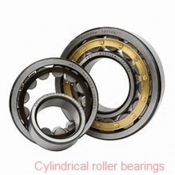 1.969 Inch   50 Millimeter x 4.331 Inch   110 Millimeter x 1.063 Inch   27 Millimeter  SKF NUP 310 ECP/C3  Cylindrical Roller Bearings